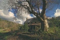 fannin county georgia (65mb) Tags: 65mb abandoned oldhouse fannincountygeorgia