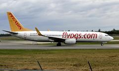 Pegasus TC-CPB, OSL ENGM Gardermoen (Inger Bjørndal Foss) Tags: tccpb pegasus boeing 737 osl engm gardermoen