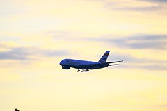 G-XLEA ~ 2019-05-06 @ LHR (1) (www.EGBE.info) Tags: gxlea heathrowairport lhr planespotting egll londonheathrow aircraftpix generalaviation aircraftpictures airplanephotos airplane airplanepictures cvtwings aircraftspotting aviation wwwegbeinfo davelenton 06052019 hounslowurbanfarm airbusa380 britishairways