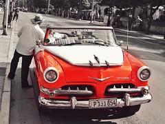 Classic #cars #classiccars #cuba #cuban #havana #cubancars #dodge #dodgedart #classicdodge #love #usa #nyc #detroit #losangeles #paris #photographer #iran #tokyo #london #berlin #havana #iran #iranian #persian #tehran (Taymaz Valley) Tags: cars classiccars cuba cuban havana cubancars dodge dodgedart classicdodge love usa nyc detroit losangeles paris photographer iran tokyo london berlin iranian persian tehran