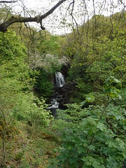 Snow Falls (StaircaseInTheDark) Tags: ingletonwaterfallstrail ingletonwaterfalls ingleton northyorkshire yorkshire northernengland england britain greatbritain uk unitedkingdom countryside englishcountryside outdoors walking northern waterfall snowfalls