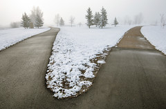 Strong or Weak Composition? (bernieboutin) Tags: dividingofthepaths whichwaytogo hillsidepark lamont alberta canada wideangle snow fog springsnow lastofwinter