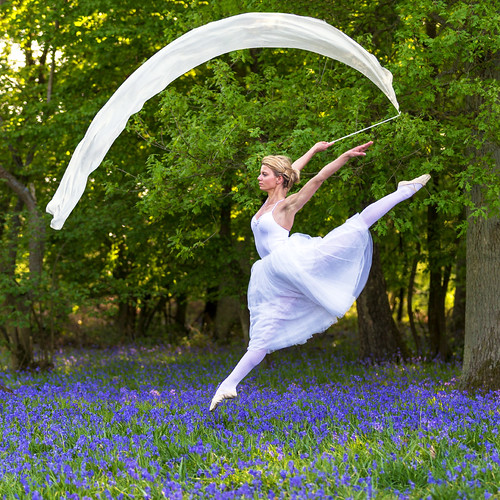 Dances with bluebells # 10