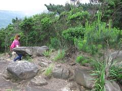IMG_6370 (kenner116) Tags: newtaipei 新北 柯子林山 kezilinshan 汐止 xizhi jinmingshan 金明山