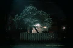 Fenced In. (david grim) Tags: 15215 httpswwwfacebookcomzipcode15215 sharpsburg pa pennsylvania davidgrim pittsburgh