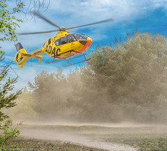 Helicopter start in the dust (Steppenwolf33) Tags: dust forest meadow helicopter start köpenick steppenwolf33 adac airrescue