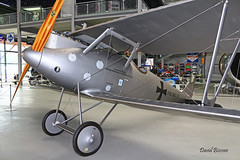 Pfalz D III  ~ 1362/17 (Aero.passion DBC-1) Tags: technic musem speyer avion aircraft aviation plane aeropassion dbc1 david biscove collection pfalz d iii ~ 136217