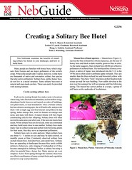Creating a Solitary Bee Hotel 00 (lasertrimman) Tags: creating solitary bee hotel
