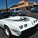 1981 Pontiac Trans Am Daytona 500 Pace Car Edition