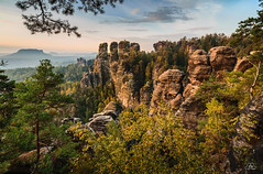 "View to the ""Gansfelsen"" - ""Goose rocks"" , Saxony (Uwe Kögler) Tags: deutschland germany saxony sachsen sächsischeschweiz morning morgen mountains gans gansfelsen wehlgrund raaber kessel plattenstein lilienstein felsen rocks wald saxonswitzerland elbsandstein elbsandsteingbirge"
