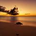 201904 Turks and Caicos-06624.jpg