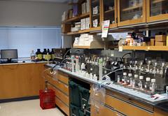 Brianna Stanley lab work