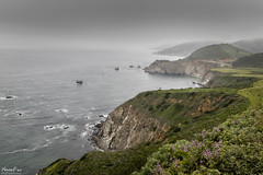 Pacific Coast Scene (NormFox) Tags: america art beach bigsur blackandwhite bridge california cliff colors digart digitalfineart digitalphotography fineart fineartphotography flowers flowersplants fog highway1 historic historical landscape mood normfoxphotography ocean old outdoor pacific pacificcoasthighway pacificocean photography photographyart photonerds point quite road rocks rural sea senic serene sky spring usa unitedstates water waves seascape carmel unitedstatesofamerica coastline coast rocky