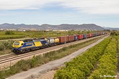 Continental Rail I (ɢ. ʙᴇʀᴇɴɢᴜᴇʀ [ ō-]) Tags: 335 335016 massalfassar cda euro4000 vossloh ferrocarril paisaje locomotive railway railroad ffcc continentalrail teco freight mercancías