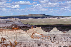 Balanced (walkerross42) Tags: petrifiedwood log ridge bluff erosion painteddesert desert nationalpark arizona stripes
