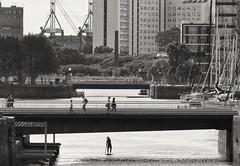 Mundos paralelos (carlos_ar2000) Tags: rio river puente bridge gente people silueta silhouette puerto port paddle remo rowing puertomadero buenosaires argentina