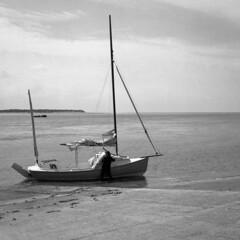 Ready for Sailing (Howie Mudge LRPS BPE1*) Tags: boat yacht sea sky aberdyfi aberdovey gwynedd wales cymru mamiyac300s fomapan200creative epsonv800 hc110 analog analogphotography 120film 6x6 film filmphotography filmisnotdead filmrevival ishootfilm believeinfilm twinlensreflex tlr