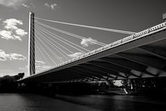 Sevilla, puente del Alamillo. (.Guillermo.) Tags: sevilla seville andalucía andalusia spain puente bridge bl black bw rio river agua water ciudad city