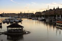 Stockholm, boats and mallards (Erik Mattsson) Tags: båtar djurgården hamn semester solnedgång stockholm