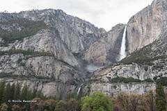 BK0_1252 (b kwankin) Tags: california yosemitefalls yosemitenationalpark