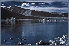908. Mono Lake 53 - Mono Lake View 21 - At Mono Lake basin 4 (Oscardaman) Tags: 908 mono lake 53 view 21 at basin 4