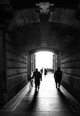 Under the Bull (Dalliance with Light (Andy Farmer)) Tags: bullkeystone street cityhall bw monochrome philadelphia philly pennsylvania unitedstatesofamerica
