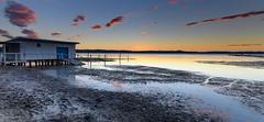 New Boat House at Long Jetty (Merrillie) Tags: sunset panoramic panorama australia reflections egret peninsula lake lowtide longjetty clouds fauna nsw tuggerahlake silhouettes scenery beautiful animal bird scenic easterngreategret outdoors water jetty centralcoast wharf newsouthwales
