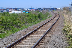 The railway (しまむー) Tags: fujifilm xe2 ebc fujinon 55mm f18 velvia yokohama kabushima 横浜 蕪島 八戸 蕪島神社 菜の花