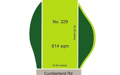 229 Cumberland Road, Auburn NSW