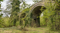 Cherwell Valley Viaduct (toniertl) Tags: arches brick overgrown railway toniphotoxoncouk viaduct industry industrial construction transport hidden mystery undergrowth green verdant secluded geometric shapes patterns structure artificial artifact privateproperty urbex