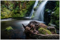 Venford Falls, Dartmoor (simondayuk) Tags: dartmoor venford venfordfalls uk devon waterfall water river stone stump treestump sony a9 sonya9 stream