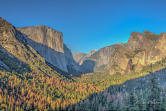 Yosemite National Park (Flow1011) Tags: usa america sun colors sky landscape sunlight bluesky roadtrip summer yosemite yosemitenationalpark nationalpark california californie sunrise forest mountain sequoia
