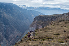 Colca Canyon (E. Aguedo) Tags: canyon colca mountain clouds tourist arequipa peru southamerica people ngc america andes altitude