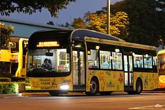 Hong Kong Disneyland Resort shuttle buses MAN NL323F UX6497 (EddieWongF14) Tags: bus kwoonchungbus hongkongdisneylandbus man manbus mana22 mannl323f nl323f gemilang lionscity lionscityhybrid ux6497 shuttlebus