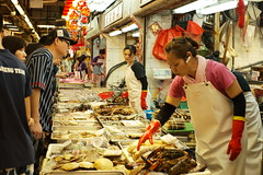 M10 + 50mm Noctilux Version 3 @ Tsuen Wan Hong Kong (canica.hk) Tags: rawfish wetmarket tsuenwan e60 version3 noctilux 50mm m10 leica