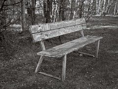 Decayed bench (Geir Bakken) Tags: linhofcolor computar symmetrigon largeformat 4x5 4x5camera 4x5film sheetfilm fomapan fx39 bench decay blackandwhite analog analogue analogphotography film filmisnotdead filmphotography filmcamera ilovefilm
