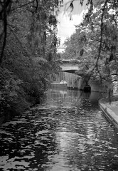 Urban Idyll (ucn) Tags: zeissikondonata2277u tessar135cmf45 rollexpatent6x9cm berggerpancro400 berlin charlottenburg