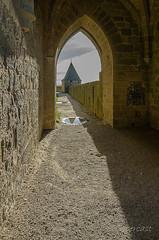 CARCASSONNE-056--OCCITANIE-PANORAMIQUE-_DSC0459 (bercast) Tags: aude carcassonne chateau chateaumedival france lesremparts occitanie ue bc bercast lacitédecarcassonne lamuraille