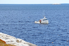 DSC03474 - Bay Bliss (archer10 (Dennis)) Tags: sony a6300 ilce6300 18200mm 1650mm mirrorless free freepicture archer10 dennis jarvis dennisgjarvis dennisjarvis iamcanadian novascotia canada glenmargaret shadbay fishing boat baybliss lobster white trap