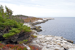 DSC03486 - Coastline of Shad Bay (archer10 (Dennis)) Tags: sony a6300 ilce6300 18200mm 1650mm mirrorless free freepicture archer10 dennis jarvis dennisgjarvis dennisjarvis iamcanadian novascotia canada glenmargaret shadbay