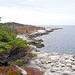 DSC03486 - Coastline of Shad Bay