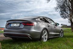 Audi A5 Quattro 2014 (mpakarlsson) Tags: audi a5 quattro sline 2014 car vinyl wrap hr sweden falköping canon 5dmarkiii 5dmark3 5diii 5dm3 llens road vehicle 24105 canon24105