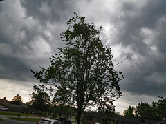 Trees And Clouds. (dccradio) Tags: lumberton nc northcarolina robesoncounty outdoor outdoors outside nature natural cloud cloudy clouds stormy stormclouds greyclouds grayclouds darkclouds rainclouds canon powershot elph 520hs building apartmentbuilding tree trees treebranch branch branches treebranches treelimb treelimbs foliage sky ominous