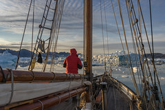 Onwards; the Admiraltinden and the Amdrup Fjord (Amdrup Tarne in the sunshine) (apcmitch) Tags: sea seascape mountains glaciers icebergs ice dolphin greenland fjords eastgreenland2014 sonya7 sailing