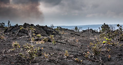 Old lava flow around Kilauea (bfluegie) Tags: bigisland hawaii hawaiivolcanoesnationalpark kilauea volcano