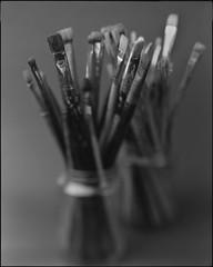 "Brushes - 2019 - 01. (sirolajos) Tags: ""8x10 plaubel peco profia"" fujinonw300mmf56 8x10 bw fomapan400 film ""d23 11gossenspotmasterjobocpe2epson perfection 4990 photoself developmentanalogueanalogblackwhitenoir et blanc closer details lights shades ""large format"""