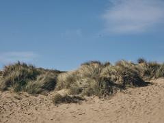 Impressionen von Utah Beach (Andreas Gugau) Tags: landschaft strand beach normandy utah meer dday invasion overlord operation neptun coastal küste sand atlantik maritim france hostroisch history geschichte allied düne dunes lamadeleine normandie frankreich