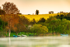 Your Sun (BeNowMeHere) Tags: ifttt 500px trip balaban benowmehere colours flowers fog foggy istanbul lake landscape nature sun trees turkey yellow your blueboat boat colorful colors colourful lost painting reflection spring travel grass rural scene field meadow yoursun