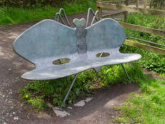 Pond Life (Glass Horse 2017) Tags: guisborough guisboroughforestwalkway ponds benches metal fabricated seats benchmonday jamesgodbold dragonfly