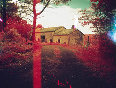 img003 (pierremartial) Tags: shootfilmnotbullets shootfilmnotmegapixels filmisnotdead ishootfilm film france périgord dordogne countryside country campagne 6x45 645 middleformat moyenformat middle format moyen 45mm ga645w wide ga645 fujifilm fuji infrarouge rouge infrared red infra kodakaerochrome aerochrome400 aerochrome kodak
